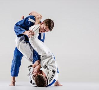 actividad - Judo